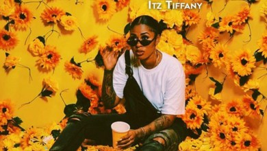 Cotyledon by Itz Tiffany