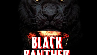 Photo of Audio: Black Panther (Spoken Word) by The Village Thinkers