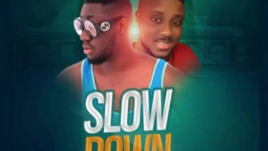 Photo of Audio: Slow Down by Mike Benzy feat. Sunshyn