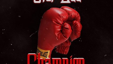 Photo of Audio: Champion (Mayweather Punch Master) by Star Zee