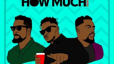 Photo of Audio: How Much (Remix) by Medikal feat. Sarkodie & Omar Sterling