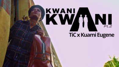 Video: Kwani Kwani Pt. 2 by Tic feat. Kuami Eugene