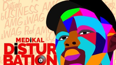 Album Review: 22 songs 1 review; Medikal's Disturbation album