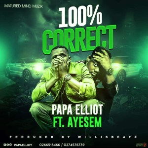 100% by Papa Elliot feat. Ayesem