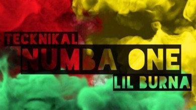 Photo of Audio: Numba 1 by Tecknikal feat. Lil Burna