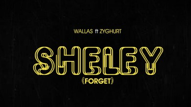 Photo of Audio: Sheley by Wallas feat. Zyghurt