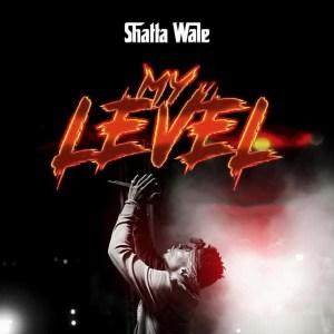 My Level by Shatta Wale