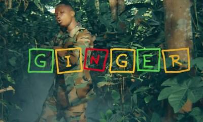 Video: Ginger by Kelvynboy