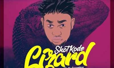 Lizard by ShotKode