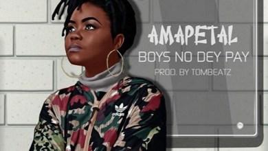 Boys No Dey Pay by Amapetal