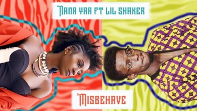 Photo of Audio: Misbehave by Nana Yaa feat. Lil Shaker