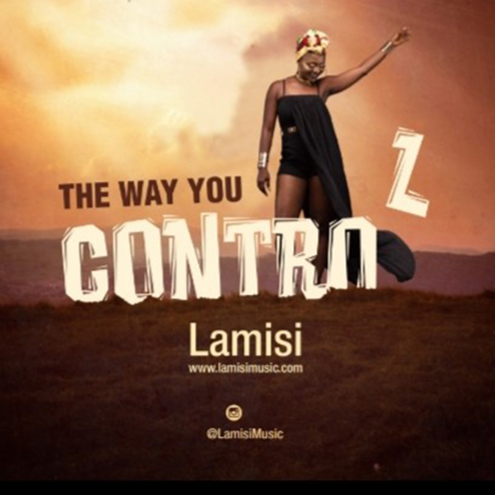 The Way You Control by Lamisi