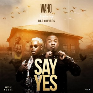 Say Yes by Wayo feat. Darkovibes