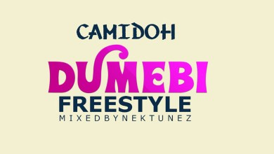 Dumebi Freestyle by Camidoh
