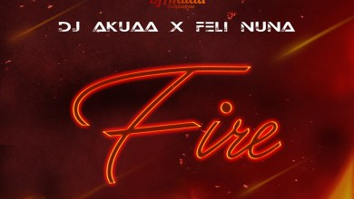 Photo of Audio: Fire by DJ Akuaa feat. Feli Nuna