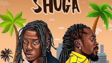 Photo of Lyrics: Shuga by Stonebwoy feat Beenie Man