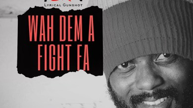 Photo of Audio: Wah Dem A Fight Fa by IWAN