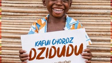 Photo of Audio: Dzidudu by Kafui Chordz