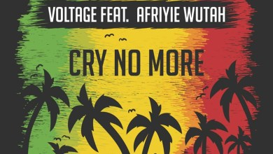 Photo of Audio: Cry No More by Voltage feat. Afriyie Wutah