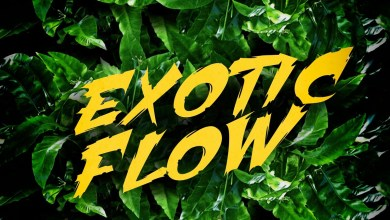 Exotic Flow by Omar Sterling