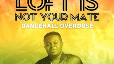 Photo of Audio: LOFT IS NOT YOUR MATE – The Dancehall Overdose Mix by DJ Loft