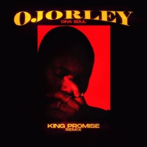 Ojorley Remix (Cina Soul) by King Promise