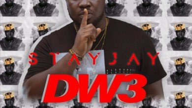 Dw3 by Stay Jay