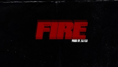Photo of Audio: Fire by Guru feat. Criss Waddle