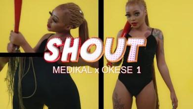 Photo of Video Premiere: Shout by Medikal & Okese1