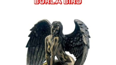 Photo of Audio: Borla Bird by Medikal