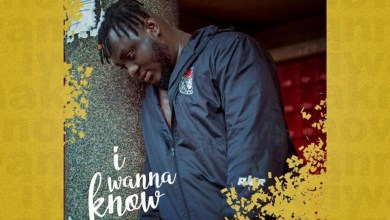 Photo of Single: I Wanna Know by Warnin Gee