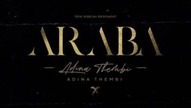 Araba by Adina Thembi