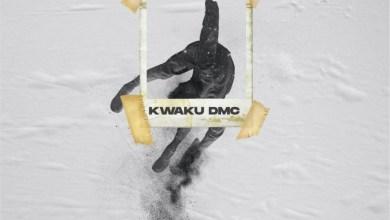 Oh Please by Kwaku DMC