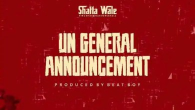 UN General Announcement by Shatta Wale