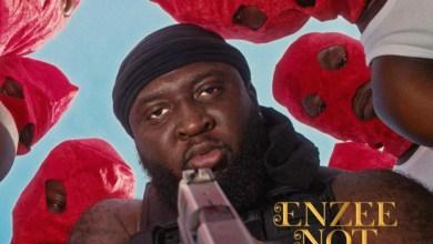 Enzee Not Envy by Raph Enzee