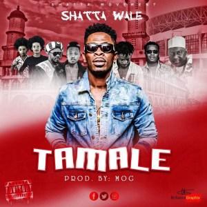 Tamale by Shatta Wale
