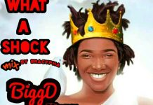 Bigg Dee Playman - What a Shock (Mixed by Bra Cypha)
