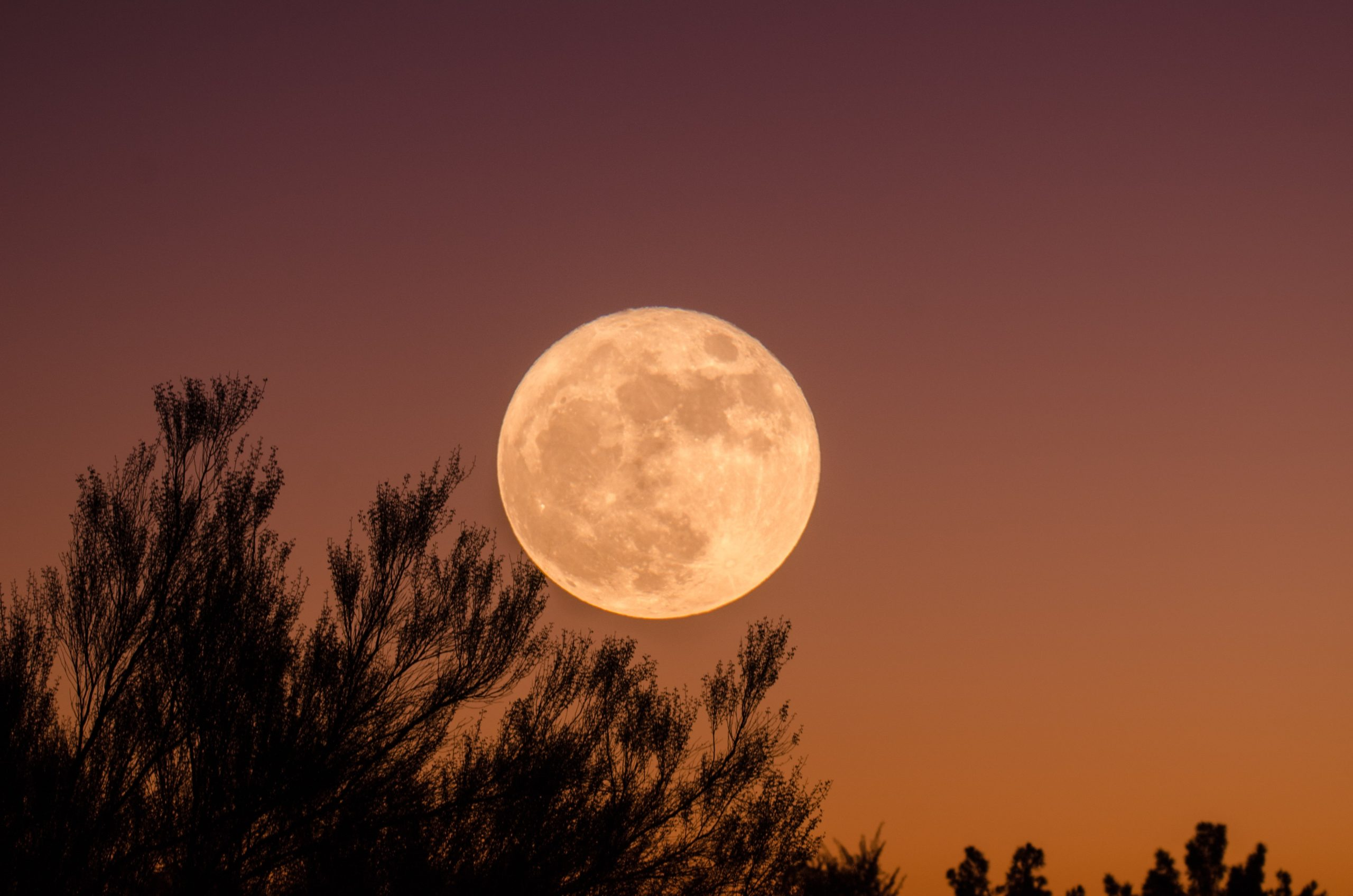 Simple Ways to Celebrate the Harvest Moon