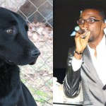 Shocking! Mystery Dog Sparks  A Race Of A Life Time For Jay Folie, Andy Dosty,Others At The 4syte Nominees Jam