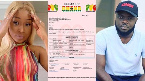 Efia Odo faces off with Kwadwo Sheldon for sharing a document that alleges that Mahama is funding #FixTheCountry protest