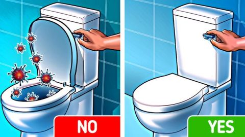 Health Tips: Here's why you should always keep the toilet lid closed before flushing