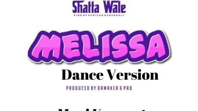 Photo of Shatta Wale Melissa Dance Version