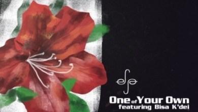 Photo of Efya ft. Bisa Kdei – Like A Brother Instrumental (Prod by TellembeatzGo)