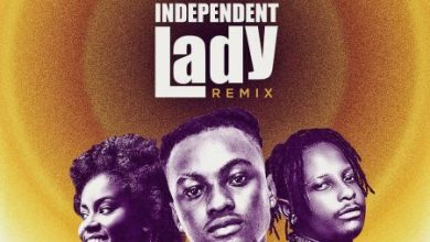 Photo of Yaw Berk – Independent Lady Remix Ft Kelvyn Boy x MzVee