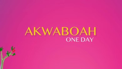 Photo of Akwaboah – One Day (Visualizer)