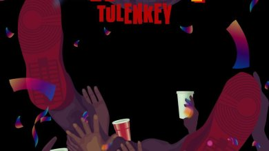 Photo of Tulenkey – Link Up (Prod. by MOG)