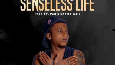 Photo of Ara-B – Senseless Life (Prod. by Paq x Shatta Wale)