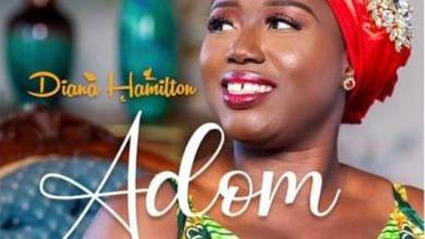 Photo of Diana Hamilton – ADOM (Grace) Lyrics