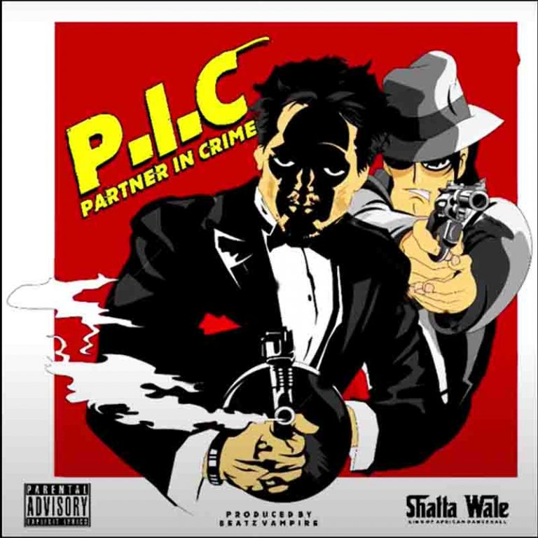 Shatta Wale – Partner In Crime (P.I.C) Instrumental