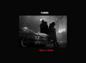 Photo of Wale – Flawed ft. Gunna [CDQ + iTunes]